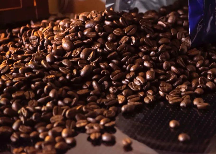 第三届咖啡潮饮嘉年华来了!就在本周末,相约海汇港,一起喝遍全球咖!